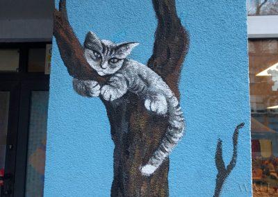 namalowany kot
