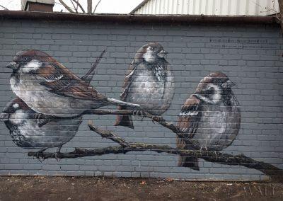 pomalowana ściana - mural ptaki