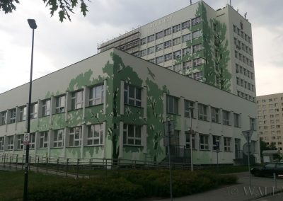 namalowane drzewa - Uniwersytet Rolniczy